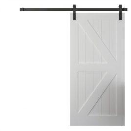 Barn Door #5